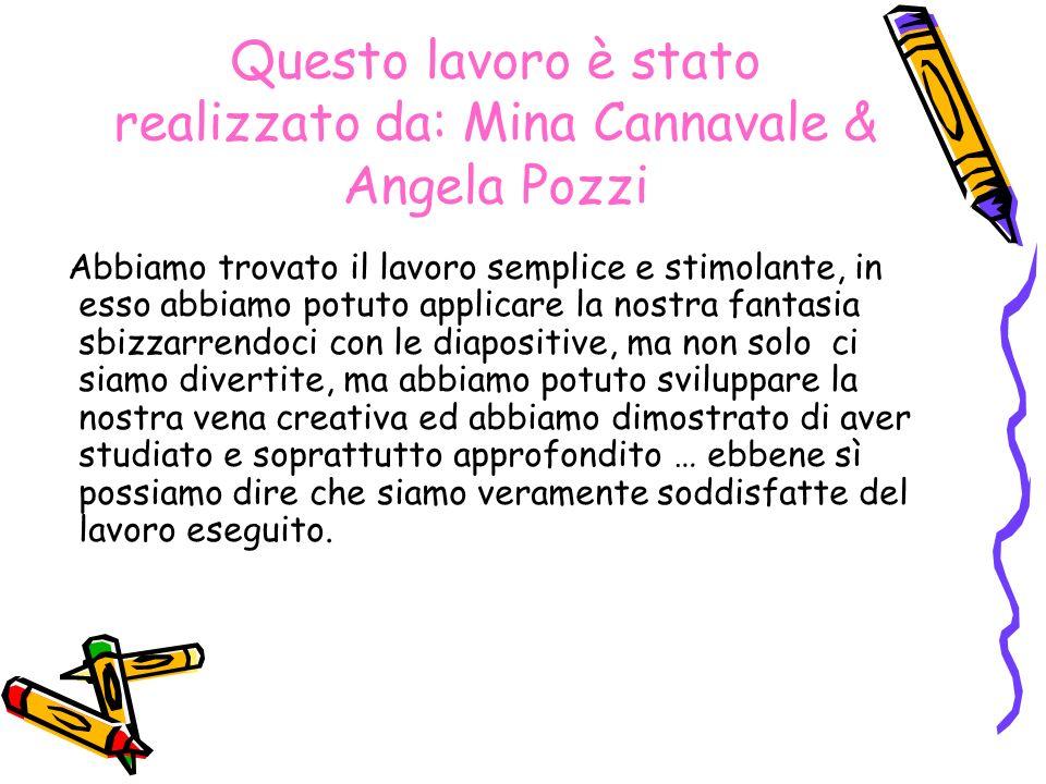 Questo lavoro è stato realizzato da: Mina Cannavale & Angela Pozzi Abbiamo trovato il lavoro semplice e stimolante, in esso abbiamo potuto applicare l