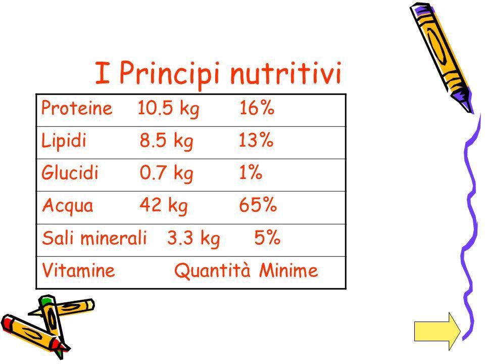 I Principi nutritivi Proteine 10.5 kg 16% Lipidi 8.5 kg 13% Glucidi 0.7 kg 1% Acqua 42 kg 65% Sali minerali 3.3 kg 5% Vitamine Quantità Minime