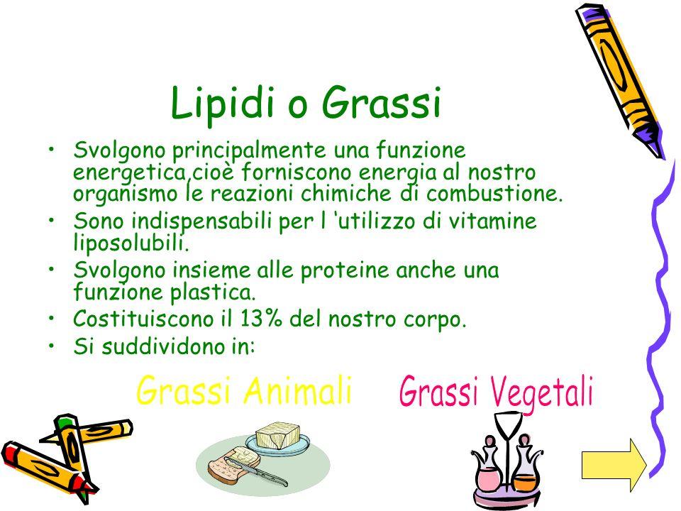 Lipidi o Grassi Svolgono principalmente una funzione energetica,cioè forniscono energia al nostro organismo le reazioni chimiche di combustione. Sono