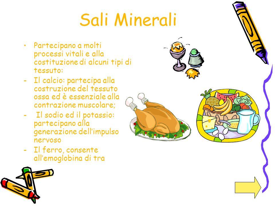 Sali Minerali Partecipano a molti processi vitali e alla costituzione di alcuni tipi di tessuto: -Il calcio: partecipa alla costruzione del tessuto os