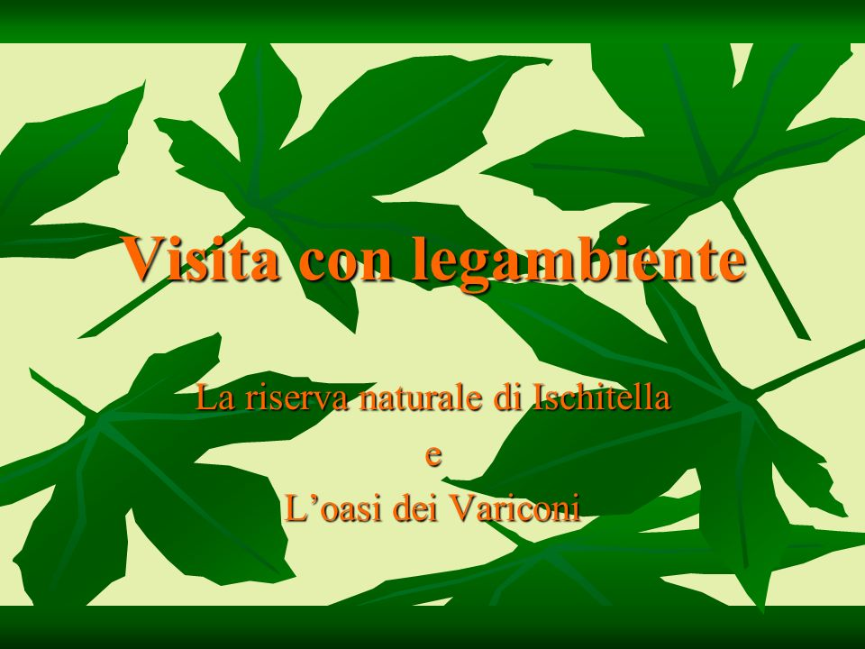 Le piante della macchia mediterranea: l Asparagina asparagus officinalis L.