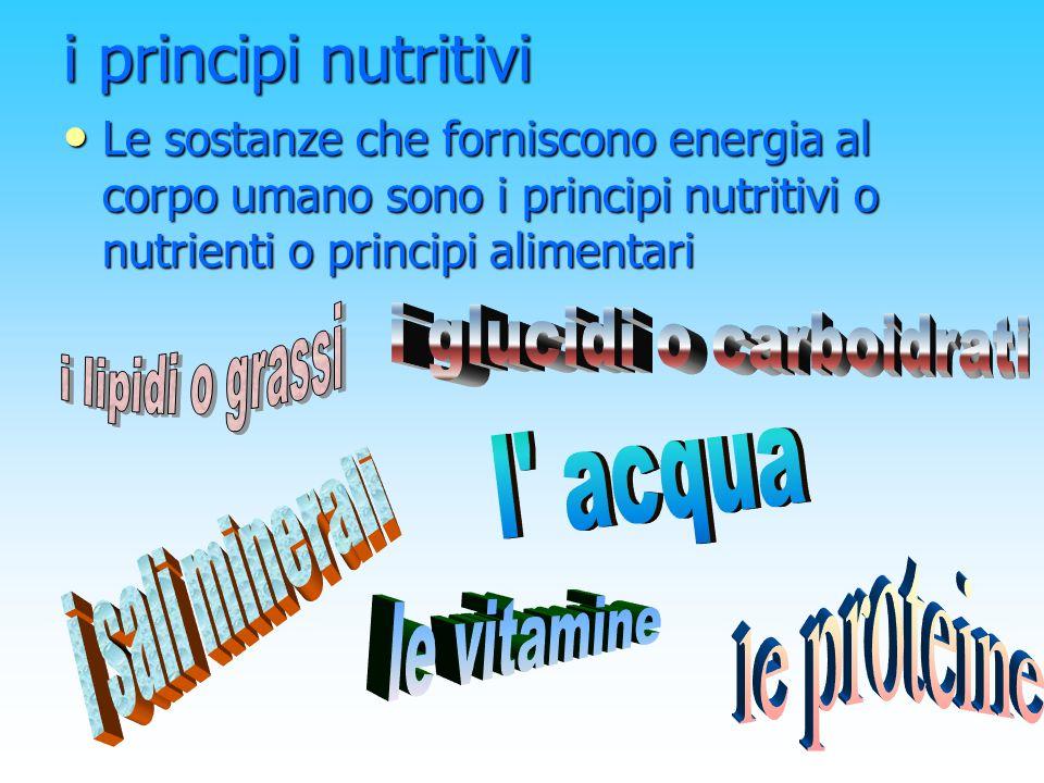 I PRINCIPI NUTRITIVI LE PROTEINE SVOLGONO LA FUNZIONE COSTRUTTRICE I LIPIDI SVOLGONO LA FUNZIONE ENERGETICA LE VITAMINE SVOLGONO LA FUNZIONE REGOLATRICE I SALI MINERALI SVOLGONO LA FUNZIONE REGOLATRICE I CARBOIDRATI SVOLGONO LA FUNZIONE ENERGETICA I GRASSI O LIPIDI SVOLGONO LA FUNZIONE ENERGETICA