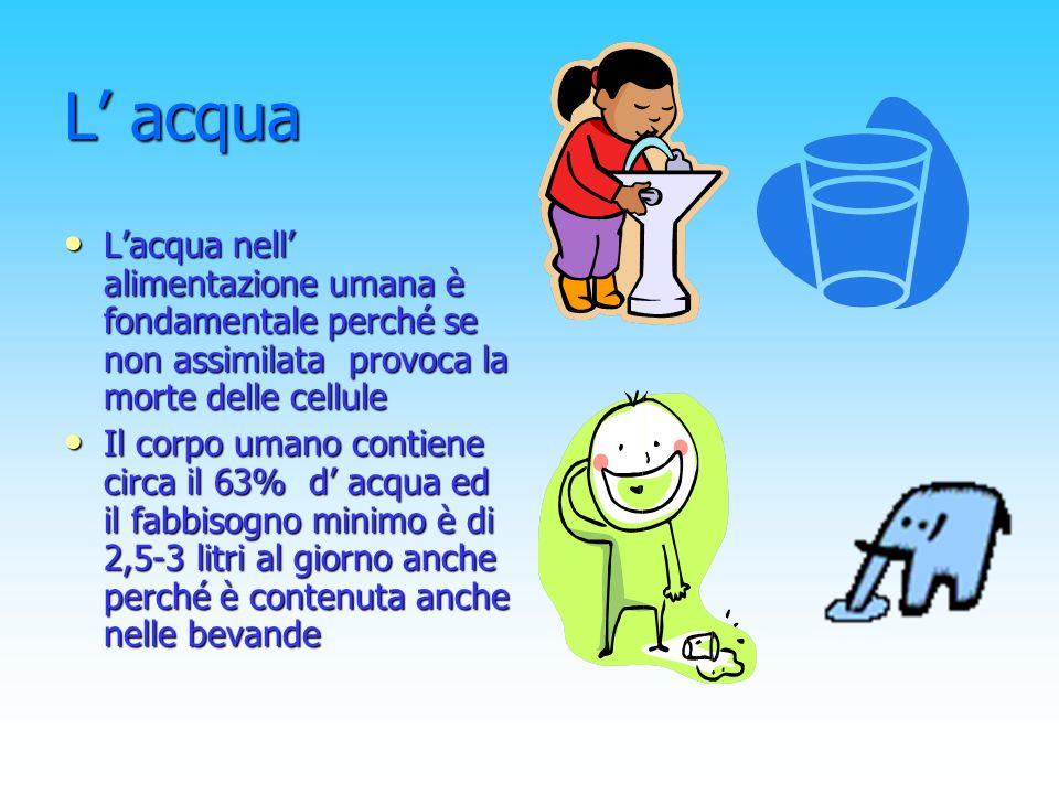 L acqua Lacqua nell alimentazione umana è fondamentale perché se non assimilata provoca la morte delle cellule Il corpo umano contiene circa il 63% d