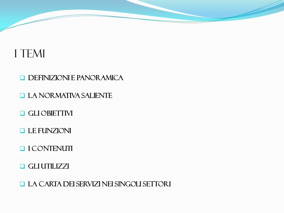 I TEMI Definizioni e panoramica La normativa saliente Gli obiettivi Le funzioni I contenuti Gli utilizzi La carta dei servizi neI SINGOLI settorI