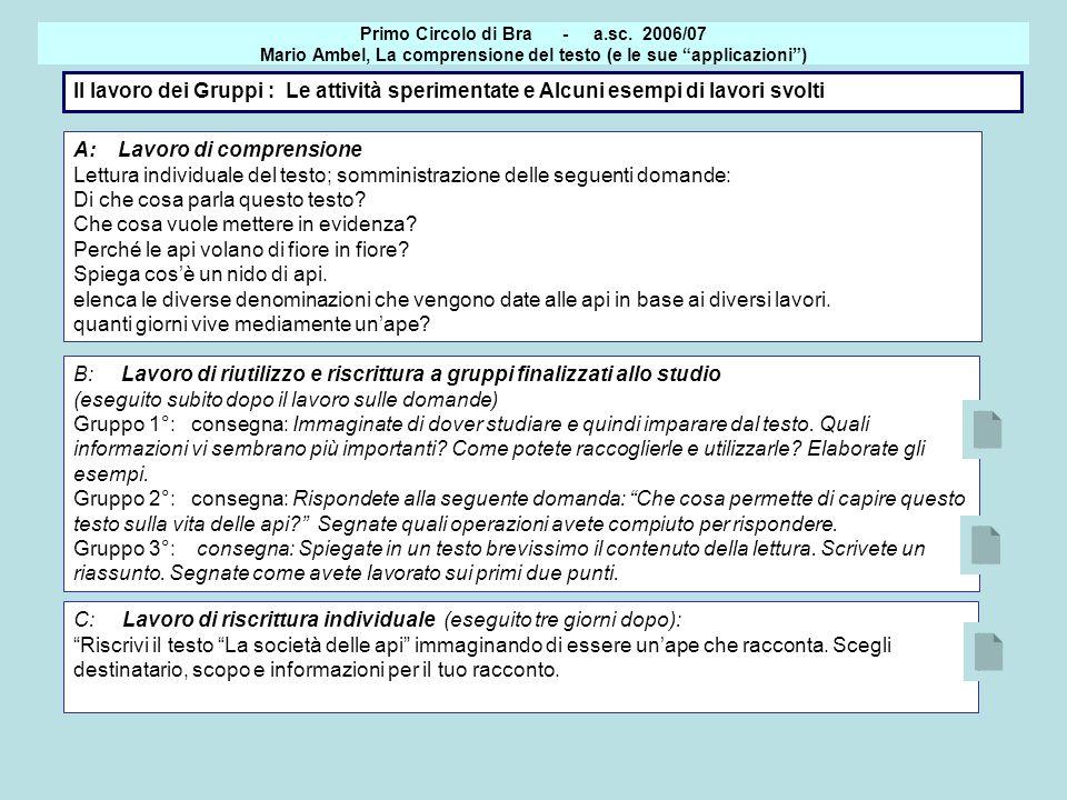 Il lavoro dei Gruppi : Le attività sperimentate e Alcuni esempi di lavori svolti Primo Circolo di Bra - a.sc. 2006/07 Mario Ambel, La comprensione del