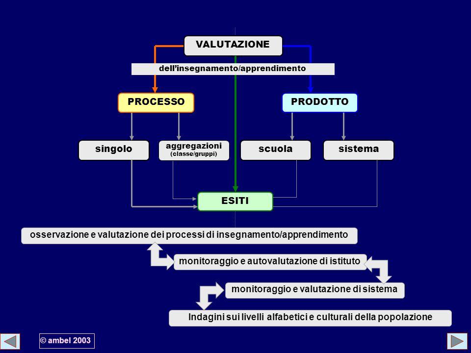 VALUTAZIONE singolo aggregazioni (classe/gruppi) scuolasistema PROCESSOPRODOTTO ESITI dellinsegnamento/apprendimento monitoraggio e autovalutazione di