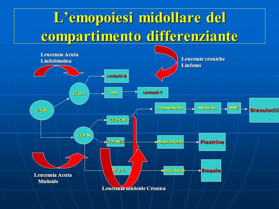 La Leucemia Acuta Blocco differenziativo precoce della cellula staminale orientata in senso mieloide (LAM) o linfoide (LAL).