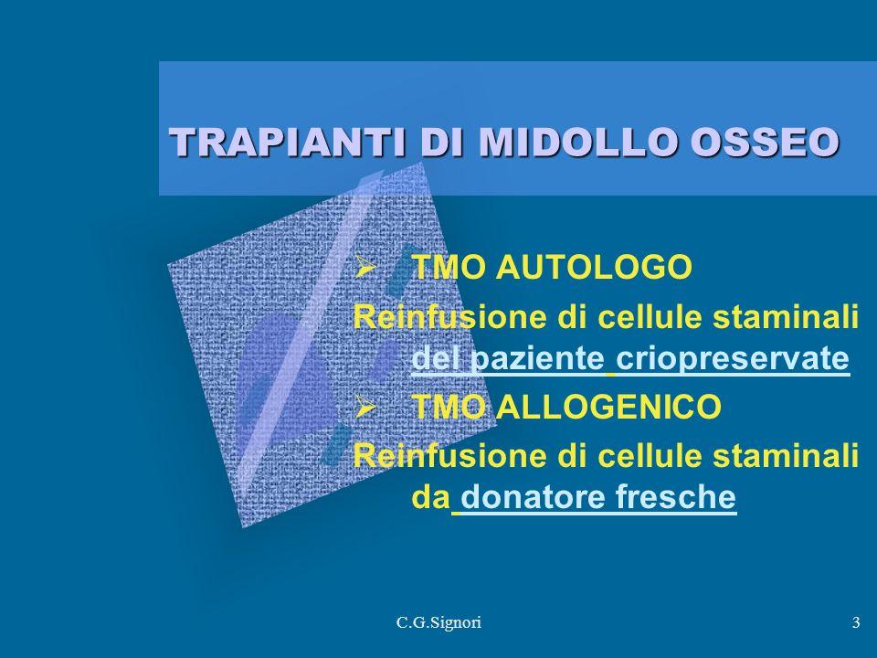 C.G.Signori3 TRAPIANTI DI MIDOLLO OSSEO TMO AUTOLOGO Reinfusione di cellule staminali del paziente criopreservate TMO ALLOGENICO Reinfusione di cellule staminali da donatore fresche