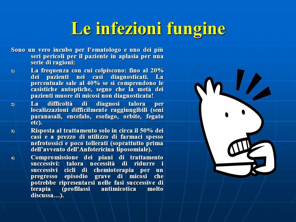 Le infezioni fungine Sono un vero incubo per lematologo e uno dei più seri pericoli per il paziente in aplasia per una serie di ragioni: 1) La frequen