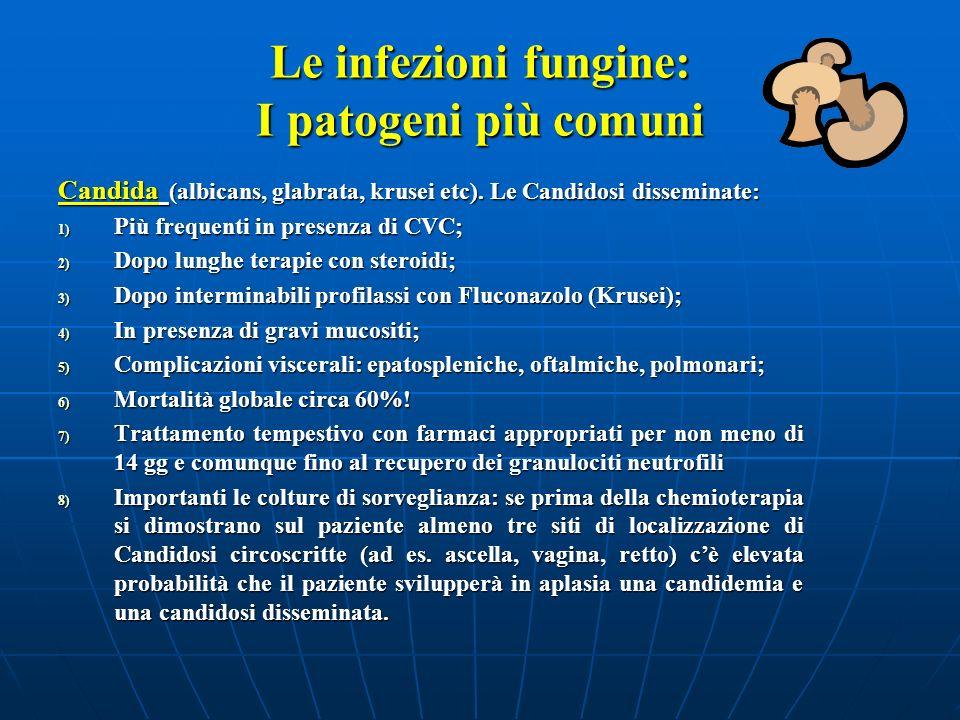 Le infezioni fungine: I patogeni più comuni Candida (albicans, glabrata, krusei etc). Le Candidosi disseminate: 1) Più frequenti in presenza di CVC; 2