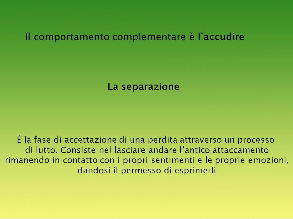 Il comportamento complementare è laccudire La separazione È la fase di accettazione di una perdita attraverso un processo di lutto.