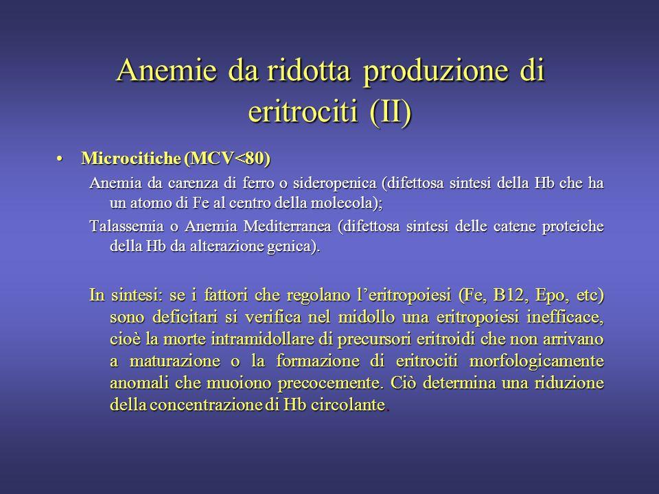 Anemie da ridotta produzione di eritrociti (I) Macrocitiche o Megaloblastiche (MCV>90)Macrocitiche o Megaloblastiche (MCV>90) Deficit Vit.B12 e/o Fola