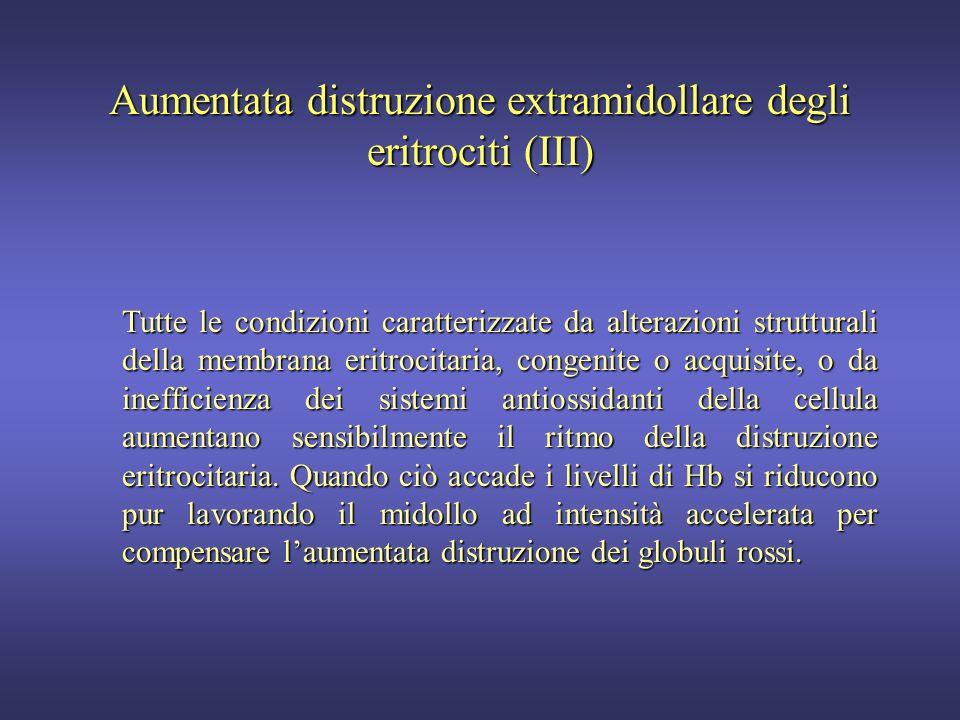 Aumentata distruzione extramidollare degli eritrociti (II) Lintegrità della membrana eritrocitaria e il funzionamento dei sistemi metabolici antiossid