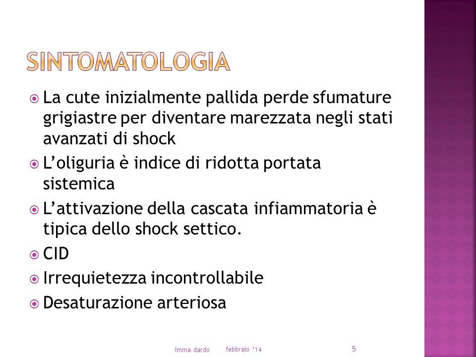 La cute inizialmente pallida perde sfumature grigiastre per diventare marezzata negli stati avanzati di shock Loliguria è indice di ridotta portata sistemica Lattivazione della cascata infiammatoria è tipica dello shock settico.