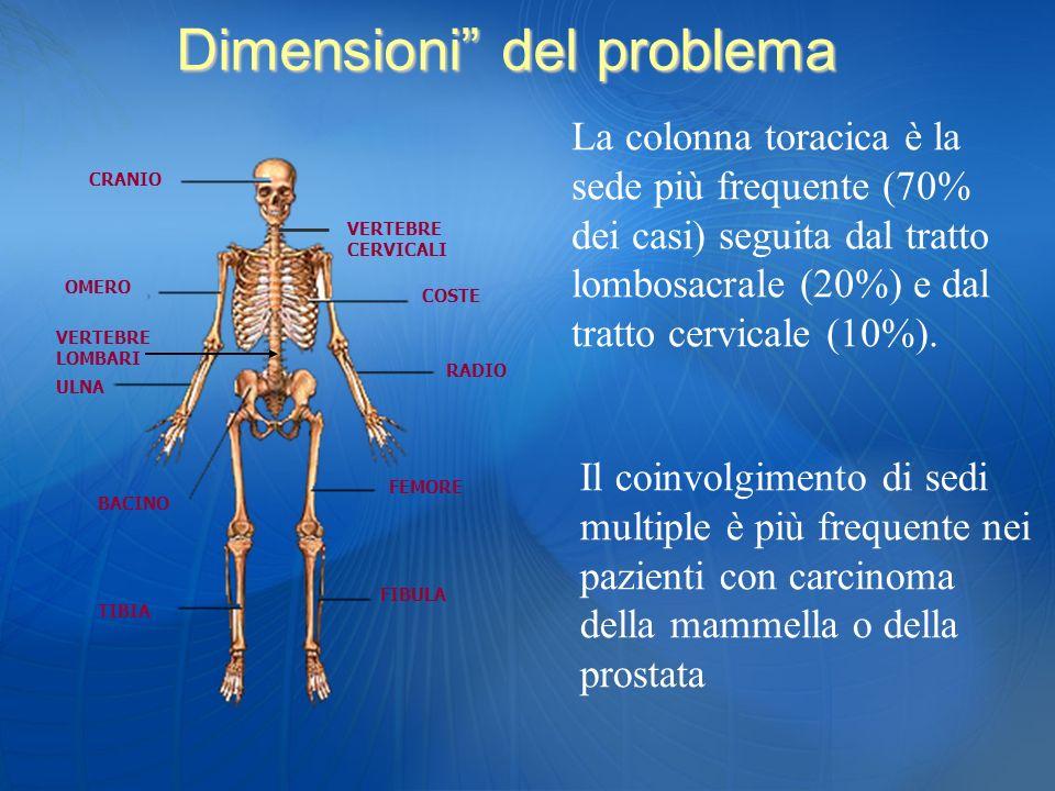 La colonna toracica è la sede più frequente (70% dei casi) seguita dal tratto lombosacrale (20%) e dal tratto cervicale (10%). Il coinvolgimento di se