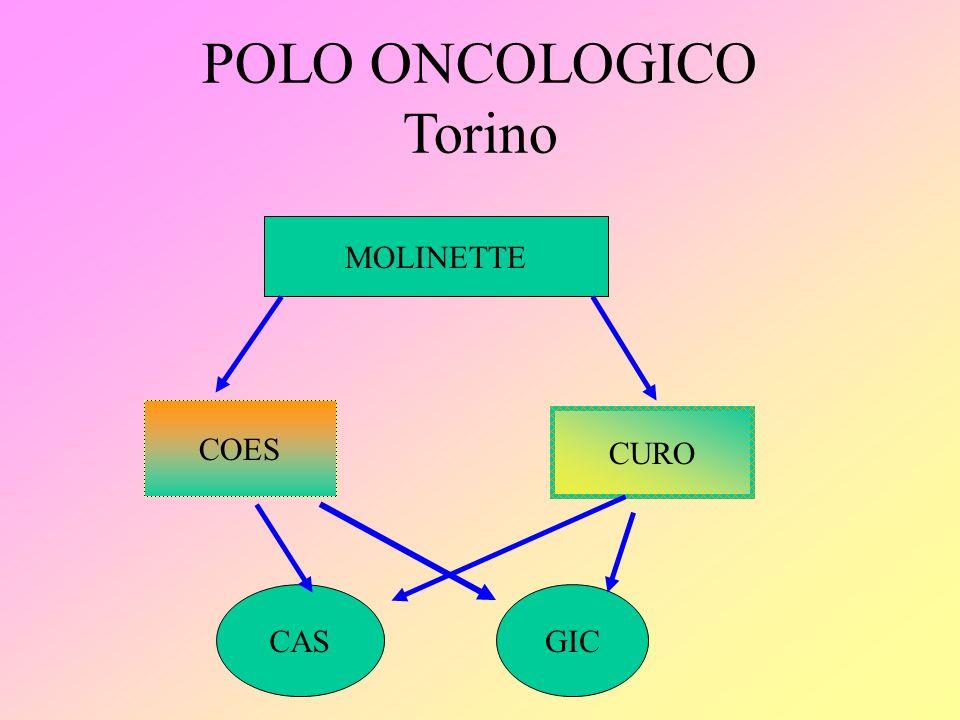 POLO ONCOLOGICO Torino MOLINETTE COES CURO CASGIC