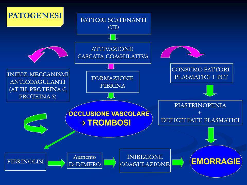 FATTORI SCATENANTI CID ATTIVAZIONE CASCATA COAGULATIVA FORMAZIONE FIBRINA OCCLUSIONE VASCOLARE TROMBOSI FIBRINOLISI CONSUMO FATTORI PLASMATICI + PLT P