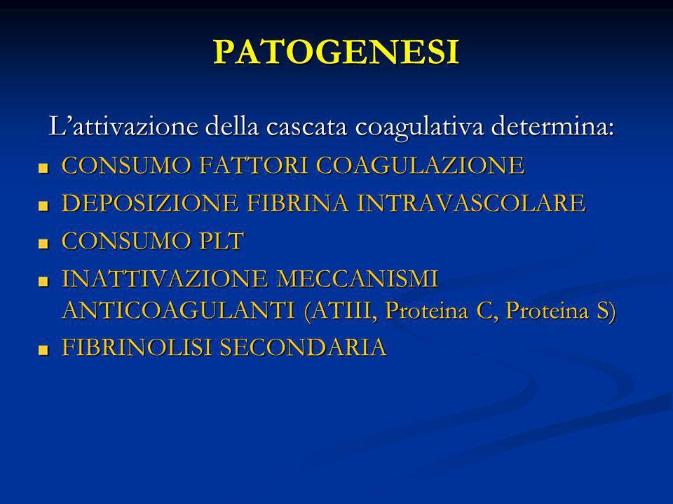 PATOGENESI Lattivazione della cascata coagulativa determina: CONSUMO FATTORI COAGULAZIONE DEPOSIZIONE FIBRINA INTRAVASCOLARE CONSUMO PLT INATTIVAZIONE