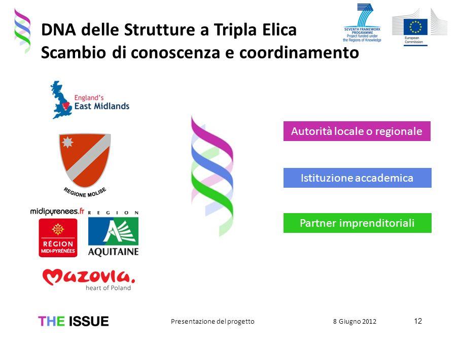 DNA delle Strutture a Tripla Elica Scambio di conoscenza e coordinamento Istituzione accademica Partner imprenditoriali Autorità locale o regionale 12