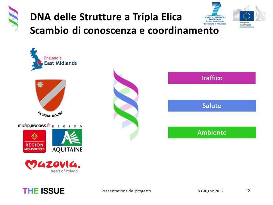 DNA delle Strutture a Tripla Elica Scambio di conoscenza e coordinamento 13 8 Giugno 2012Presentazione del progetto Salute Ambiente Traffico