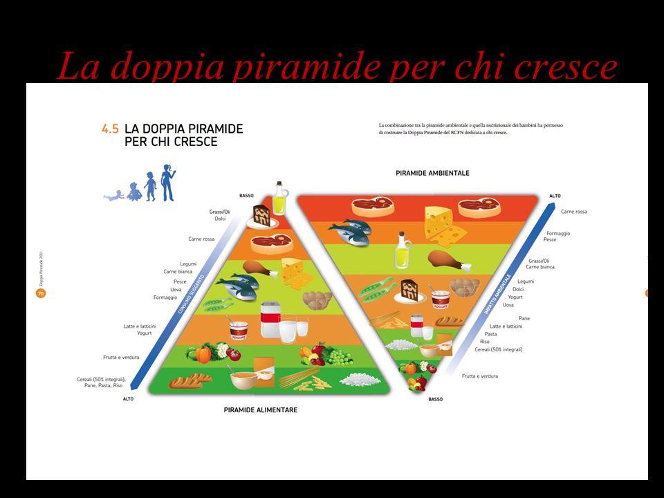 La doppia piramide per chi cresce