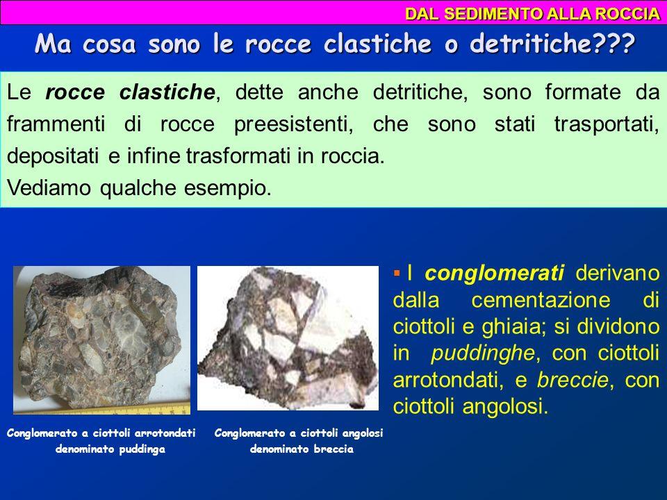 Rocce clastiche e sedimenti sciolti vengono classificati in base alle dimensioni dei frammenti SEDIMENTAZIONE 2,00 mm 0,004 0,062 Sedimento sciolto ARGILLA SILT SABBIA GHIAIA PIETRISCO Roccia sedimentaria ARGILLITE SILTITE ARENARIA CONGLOMERATO BRECCIA