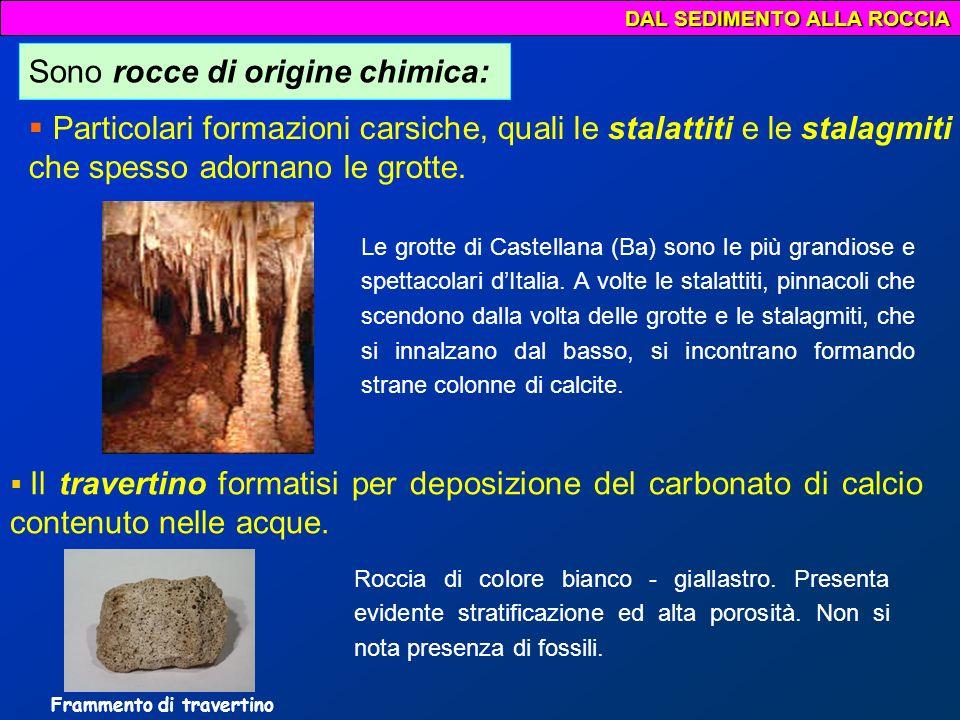 Ma cosa sono le rocce di origine organogene ??.
