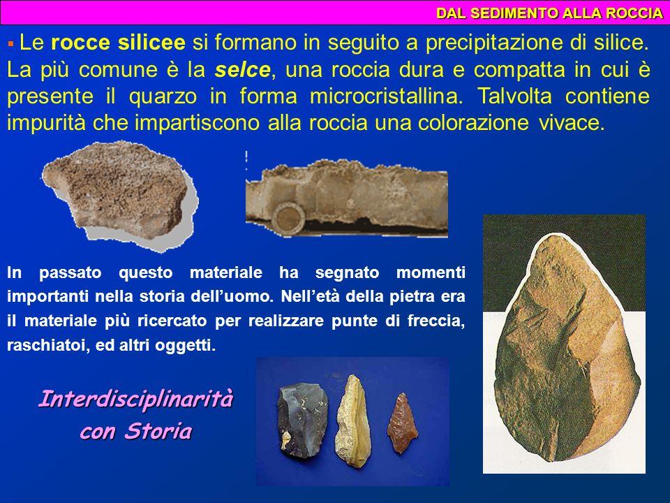DAL SEDIMENTO ALLA ROCCIA I carboni fossili derivanti dalla fossilizzazione di grande masse vegetali.