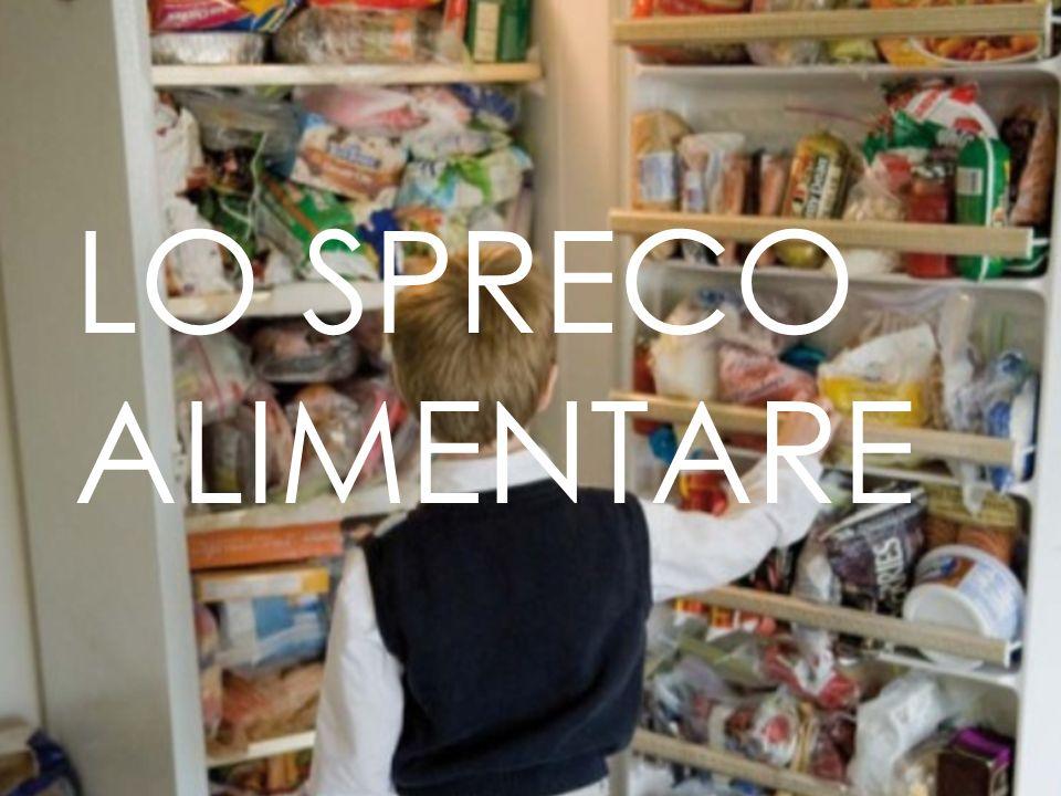 Consumo domestico e ristorazione Spreco domestico: -Avanzi di cibo e danneggiamento durante la cottura; -Alimenti non consumati in tempo e gettati via.