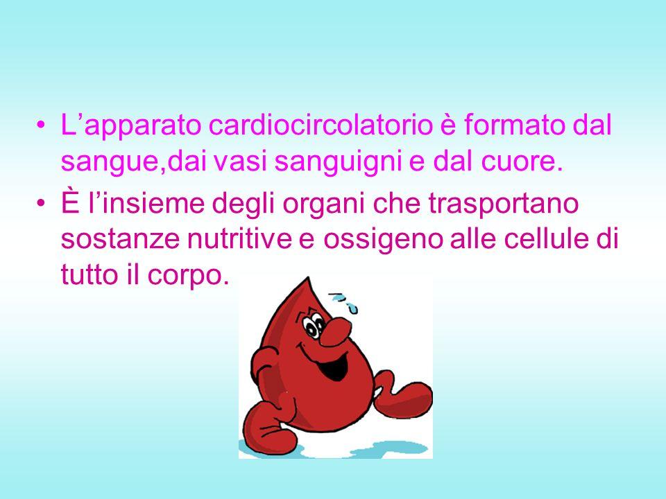 Lapparato cardiocircolatorio è formato dal sangue,dai vasi sanguigni e dal cuore. È linsieme degli organi che trasportano sostanze nutritive e ossigen