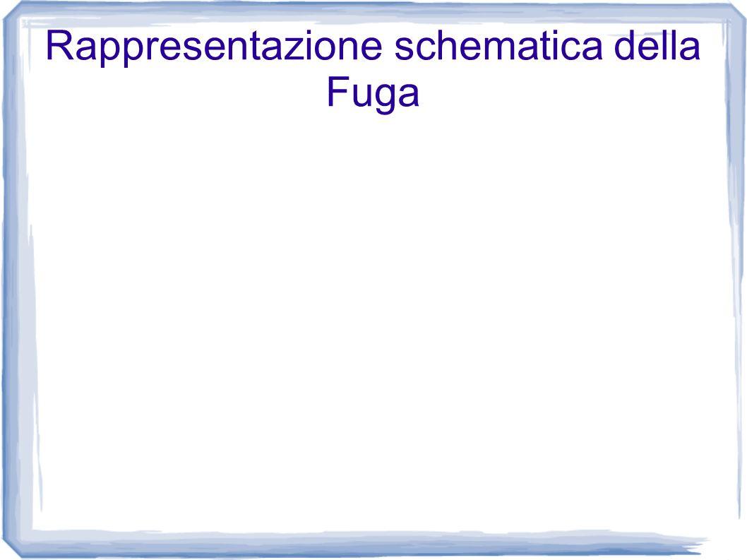 Rappresentazione schematica della Fuga