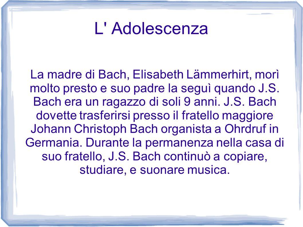 L' Adolescenza La madre di Bach, Elisabeth Lämmerhirt, morì molto presto e suo padre la seguì quando J.S. Bach era un ragazzo di soli 9 anni. J.S. Bac