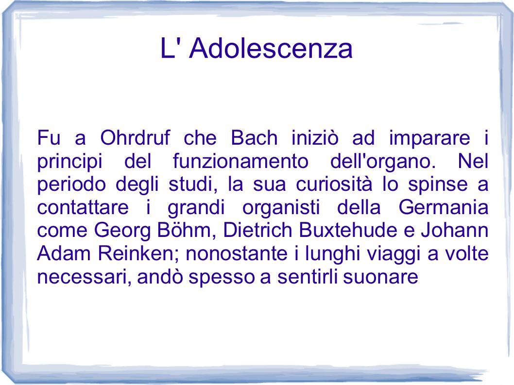 L' Adolescenza Fu a Ohrdruf che Bach iniziò ad imparare i principi del funzionamento dell'organo. Nel periodo degli studi, la sua curiosità lo spinse