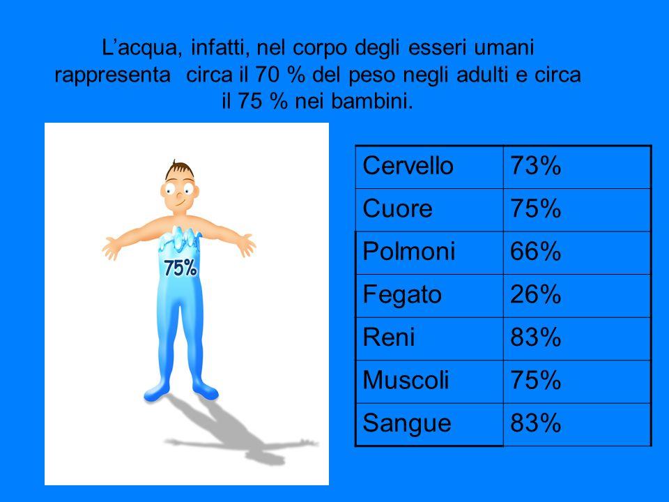 Lacqua, infatti, nel corpo degli esseri umani rappresenta circa il 70 % del peso negli adulti e circa il 75 % nei bambini.
