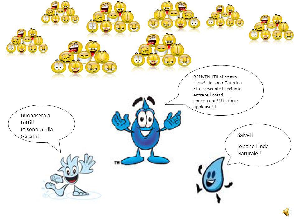Che cosè il ciclo dellacqua?.