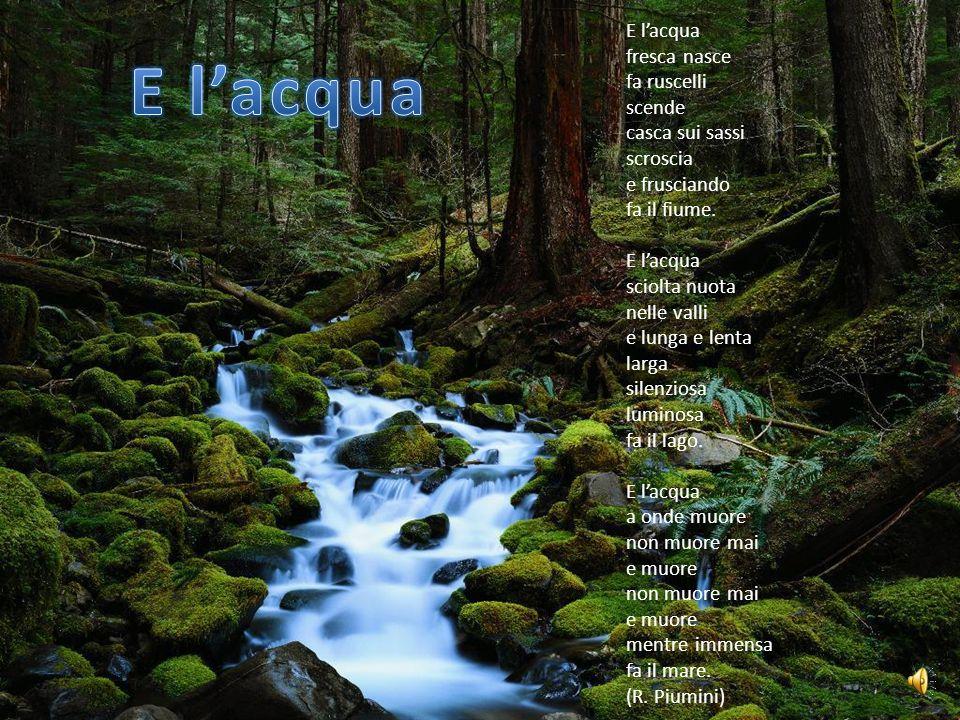 E lacqua fresca nasce fa ruscelli scende casca sui sassi scroscia e frusciando fa il fiume.