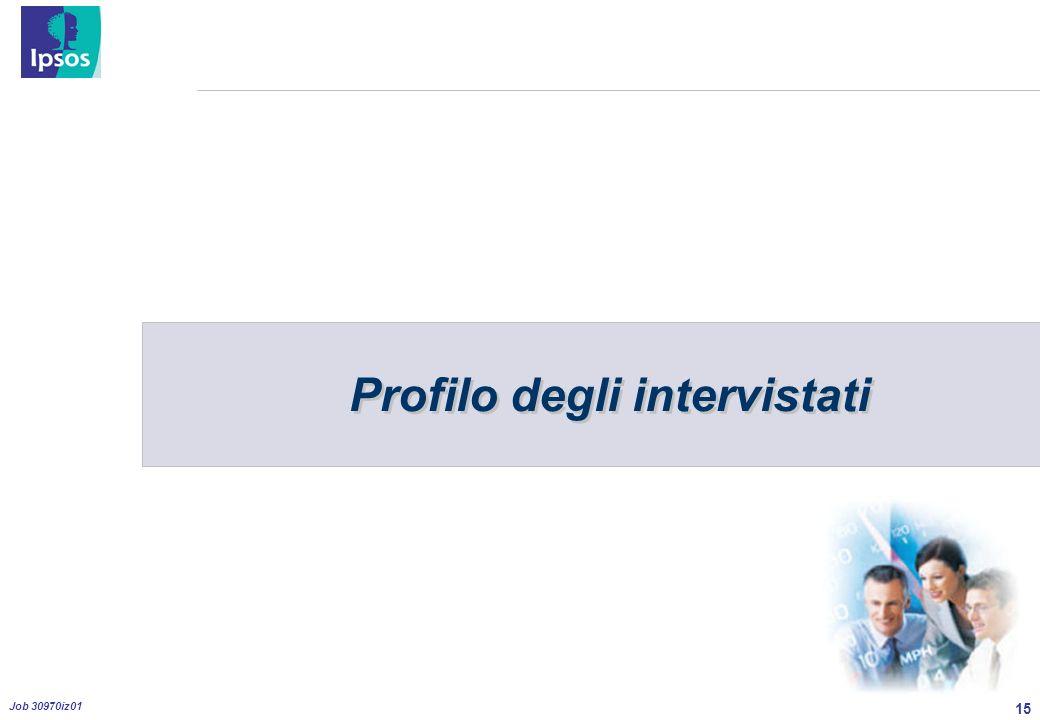 15 Job 30970iz01 Profilo degli intervistati
