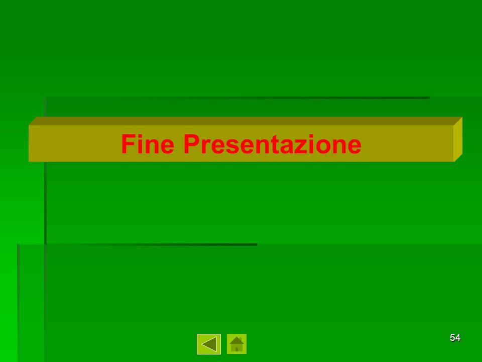 54 Fine Presentazione