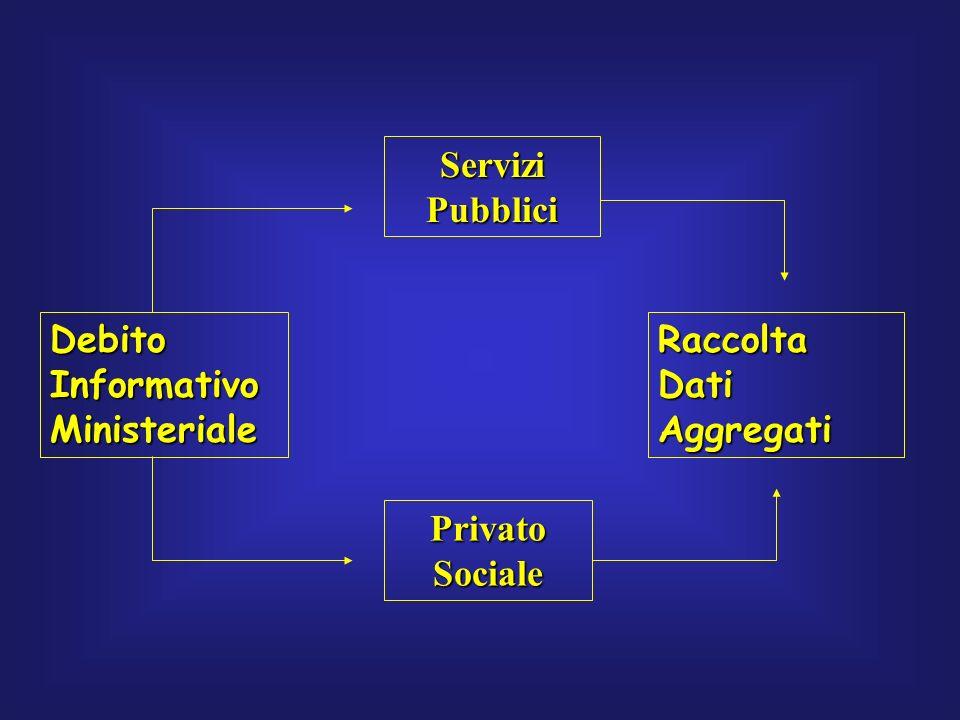 Debito Informativo Ministeriale Servizi Pubblici Privato Sociale Raccolta Dati Aggregati