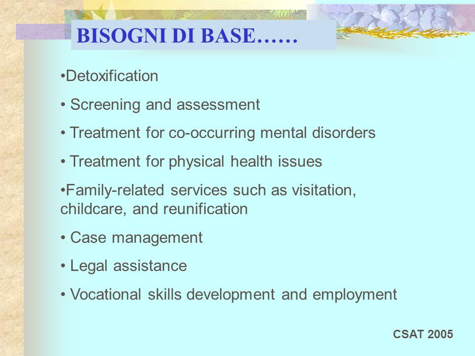 Detoxification Screening and assessment Treatment for co-occurring mental disorders Treatment for physical health issues Family-related services such as visitation, childcare, and reunification Case management Legal assistance Vocational skills development and employment BISOGNI DI BASE…… CSAT 2005