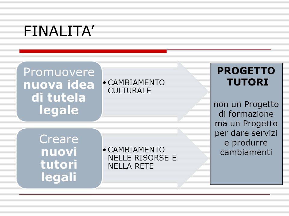 CAMBIAMENTO CULTURALE Promuovere nuova idea di tutela legale CAMBIAMENTO NELLE RISORSE E NELLA RETE Creare nuovi tutori legali PROGETTO TUTORI non un