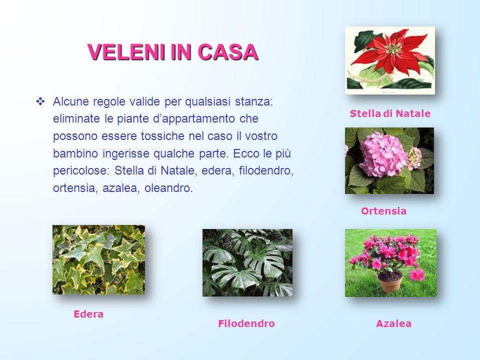 VELENI IN CASA Alcune regole valide per qualsiasi stanza: eliminate le piante dappartamento che possono essere tossiche nel caso il vostro bambino ing