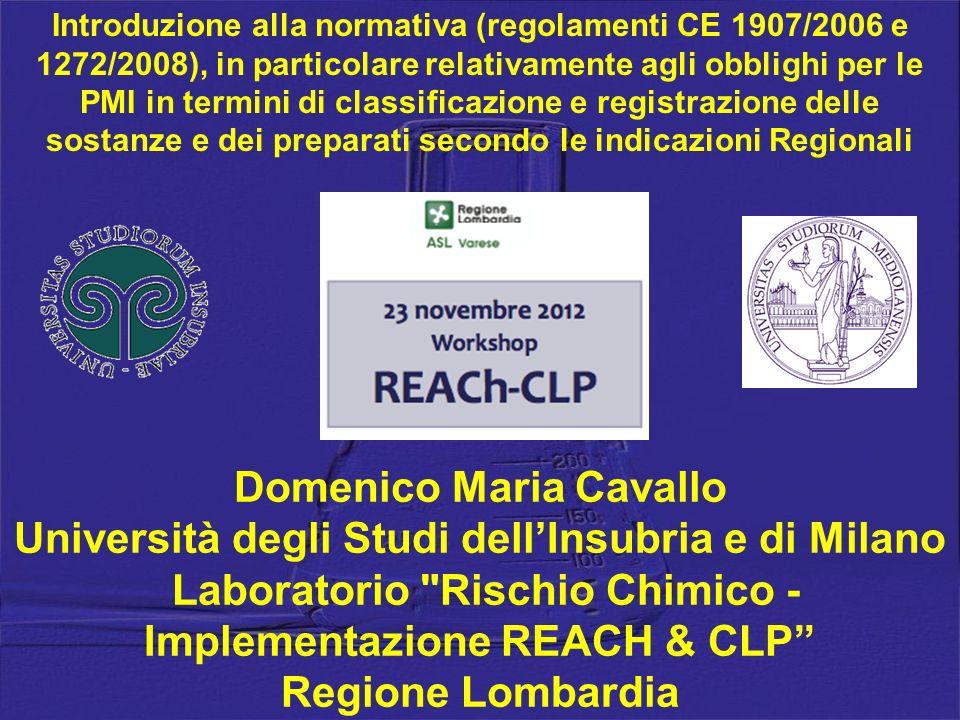 Domenico Maria Cavallo Università degli Studi dellInsubria e di Milano Laboratorio