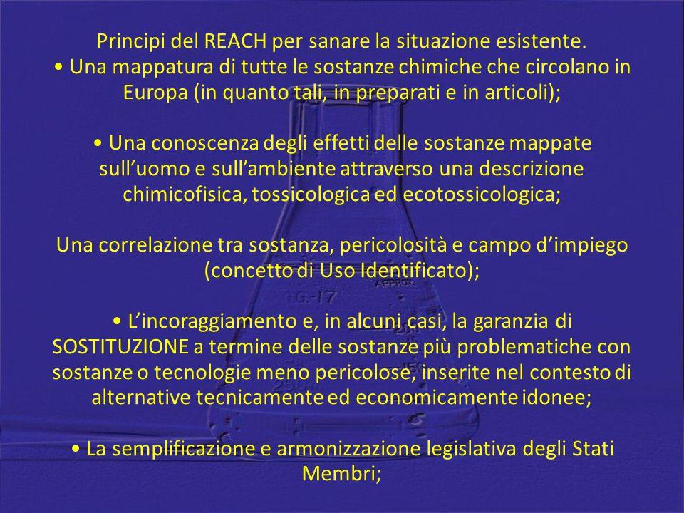 Principi del REACH per sanare la situazione esistente. Una mappatura di tutte le sostanze chimiche che circolano in Europa (in quanto tali, in prepara