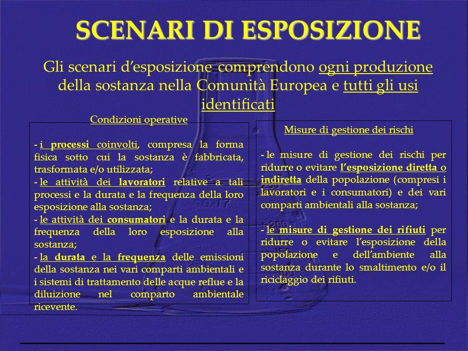 SCENARI DI ESPOSIZIONE Gli scenari desposizione comprendono ogni produzione della sostanza nella Comunità Europea e tutti gli usi identificati Condizi
