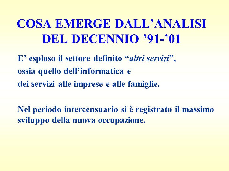 COSA EMERGE DALLANALISI DEL DECENNIO 91-01 E esploso il settore definito altri servizi, ossia quello dellinformatica e dei servizi alle imprese e alle famiglie.