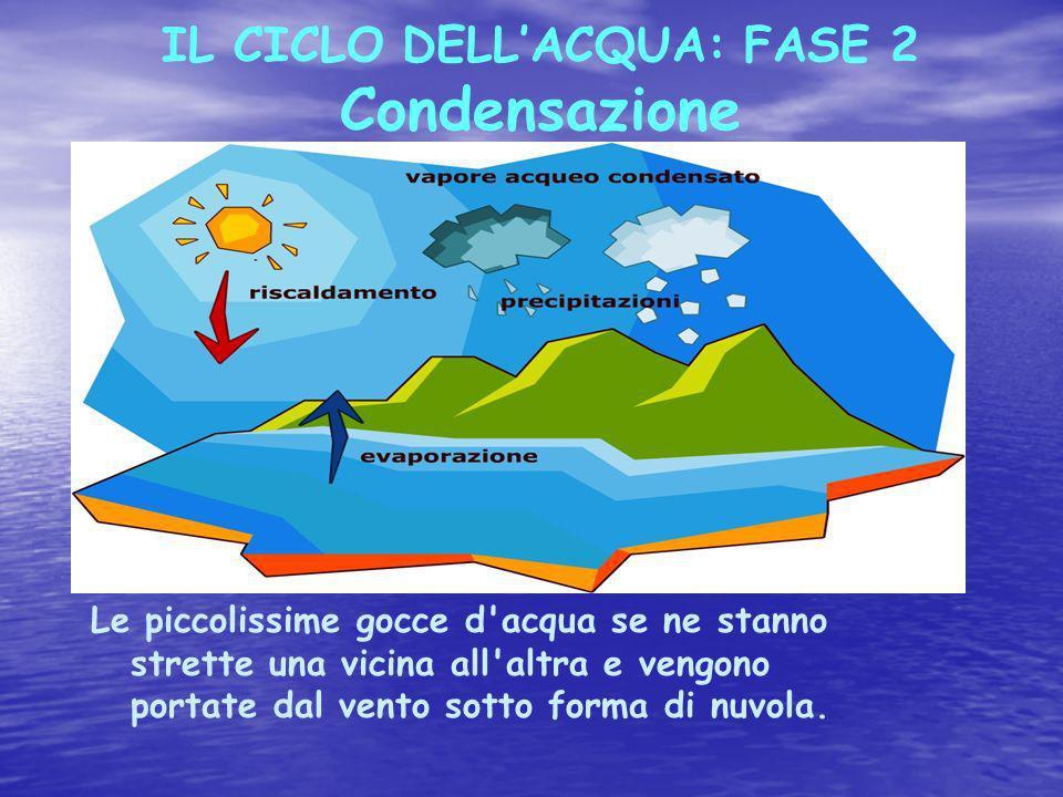 IL CICLO DELLACQUA: FASE 2 Condensazione Le piccolissime gocce d acqua se ne stanno strette una vicina all altra e vengono portate dal vento sotto forma di nuvola.