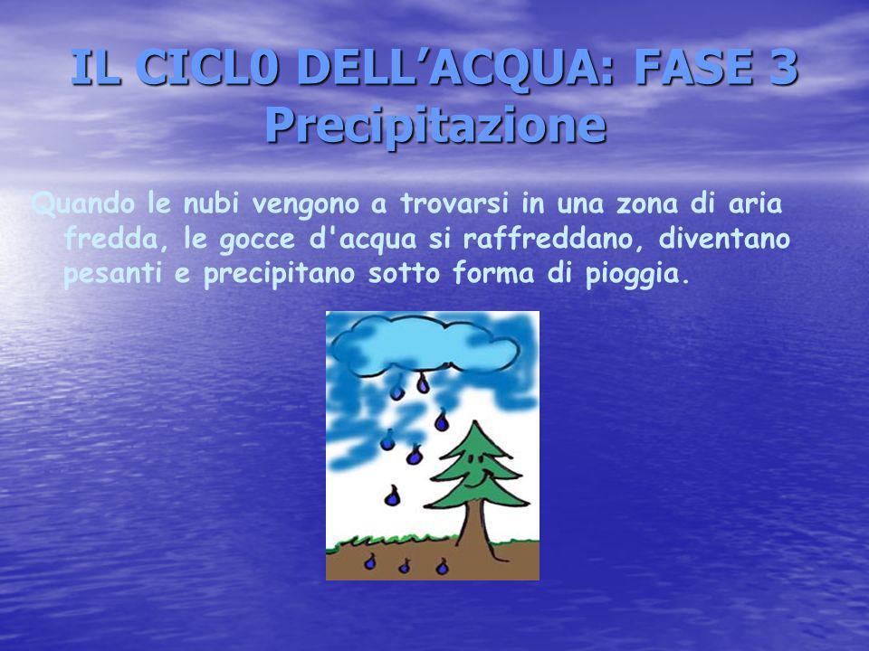 IL CICL0 DELLACQUA: FASE 3 Precipitazione Quando le nubi vengono a trovarsi in una zona di aria fredda, le gocce d acqua si raffreddano, diventano pesanti e precipitano sotto forma di pioggia.