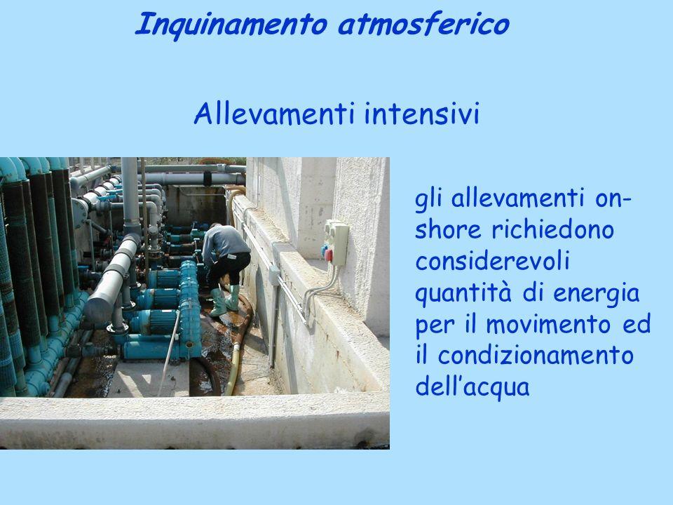Allevamenti intensivi Inquinamento atmosferico gli allevamenti on- shore richiedono considerevoli quantità di energia per il movimento ed il condizionamento dellacqua