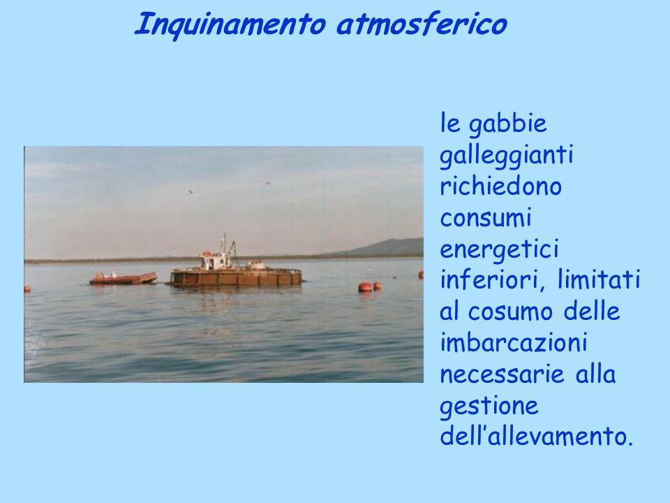 le gabbie galleggianti richiedono consumi energetici inferiori, limitati al cosumo delle imbarcazioni necessarie alla gestione dellallevamento. Inquin